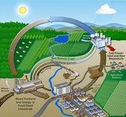 Power Biomass gasifier