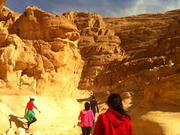 Day tours to Cairo from Sharm el Sheikh |one day tour of Cairo