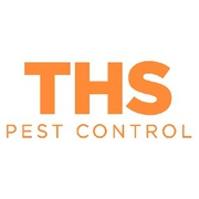 Ant Control Leeds - THS Pest Control